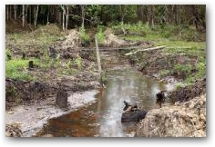 Oil contamination in the indigenous Kichwa village of Rumipamba  -> Click to enlarge