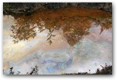 Oil slick on water in indigenous Kichwa village of Rumipamba  -> Click to enlarge